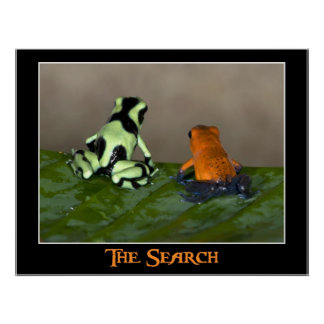 La búsqueda posters