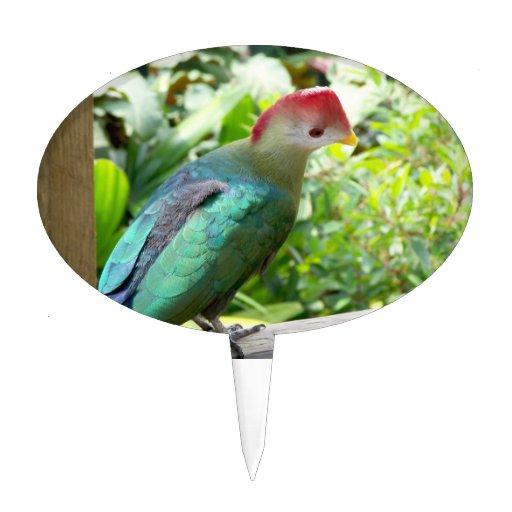 La cabeza colorida del pájaro giró el poste figura para tarta