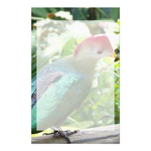 La cabeza colorida del pájaro giró el poste papelería de diseño