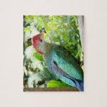 La cabeza colorida del pájaro giró el poste rompecabezas con fotos