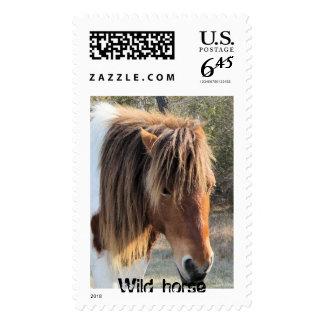 La cabeza de caballo salvaje sellos postales