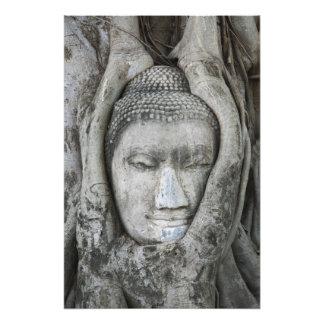 La cabeza de la piedra arenisca de Buda rodeó por  Fotografía
