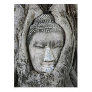 La cabeza de la piedra arenisca de Buda rodeó por Postales