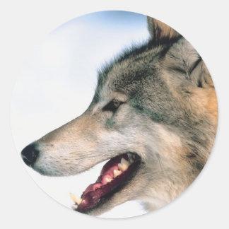 La cabeza del lobo pegatina redonda