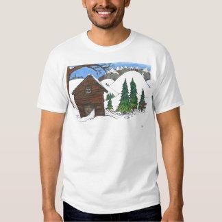 La cabina Nevado Poleras