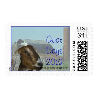 La cabra de la gama de Nubian y el sello del grane