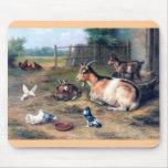 La cabra de la granja embroma palomas alfombrilla de ratones