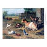 La cabra de la granja embroma palomas felicitaciones