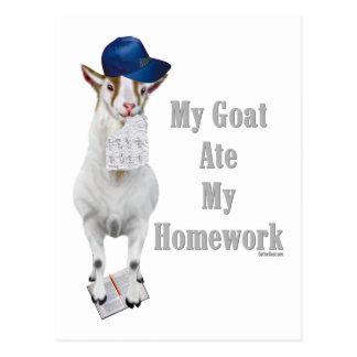 La cabra divertida comió mi preparación postales