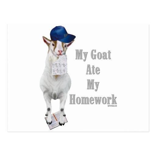 La cabra divertida comió mi preparación tarjeta postal