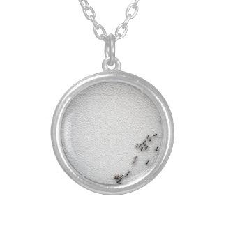 La cadena del primer de las hormigas collar plateado