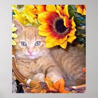 La caída anaranjada del ~ del gatito del gato del  posters