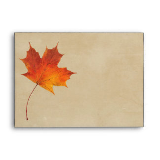 La caída anaranjada del otoño en amor deja el boda sobre