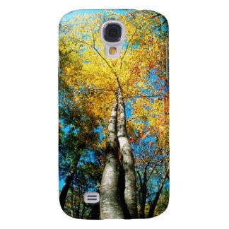La caída colorea - Great Smoky Mountains - árboles