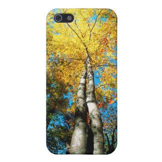 La caída colorea - Great Smoky Mountains - árboles iPhone 5 Protector