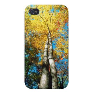 La caída colorea - Great Smoky Mountains - árboles iPhone 4 Carcasas