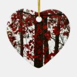 La caída colorea las hojas de arce canadienses roj adornos