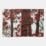 La caída colorea las hojas de arce canadienses roj toallas de cocina
