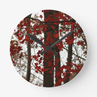 La caída colorea las hojas de arce canadienses roj relojes