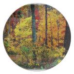 La caída colorea paisaje en la placa de la melamin platos