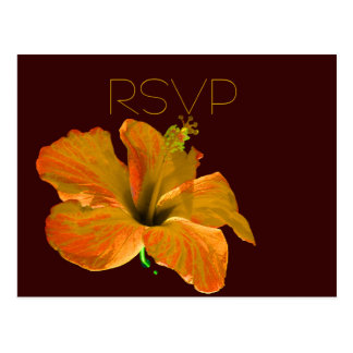 La caída de RSVP colorea el boda Tarjetas Postales