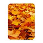 La caída deja a otoño la cubierta de tierra iman flexible