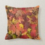 La caída deja la almohada mezclada de los colores
