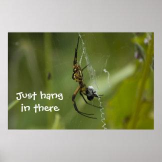 La caída del Web de araña del plátano apenas en al Póster