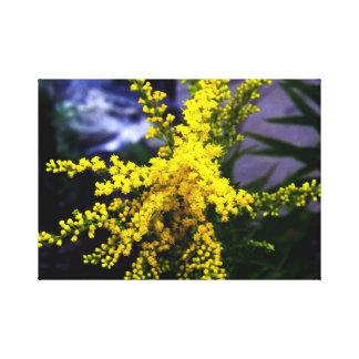 La caída florece Rod de oro Impresión En Lienzo