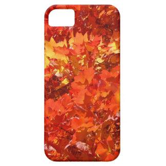 La caída hermosa deja gracias de los regalos de lo iPhone 5 Case-Mate funda