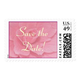 ¡La camelia rosada suave, ahorra la fecha! Sello