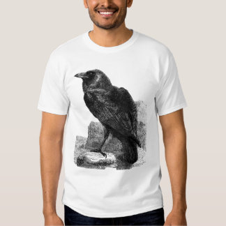 La camisa del cuervo