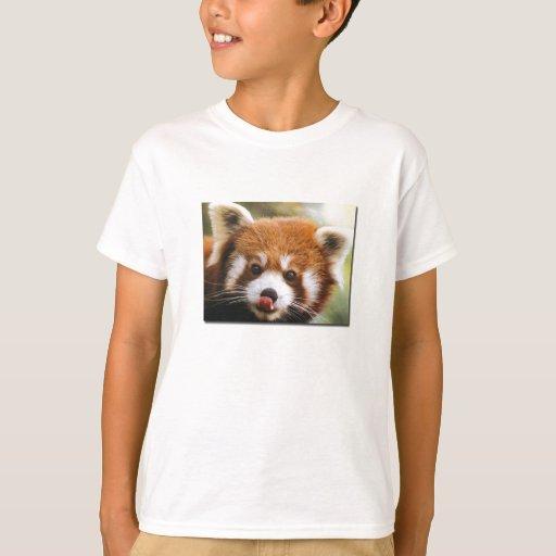 La camisa del niño de la panda roja