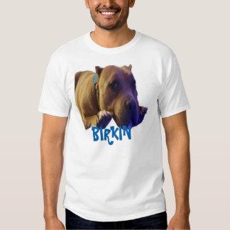 La camiseta básica de los hombres poleras