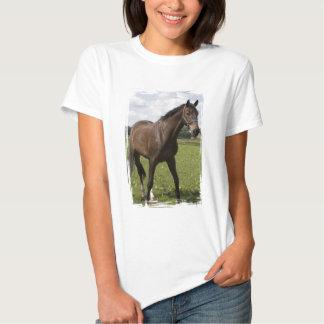 La camiseta de la mujer excelente del caballo remeras