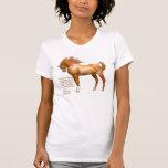 La camiseta de las mujeres de la cita del caballo