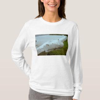 La camiseta de las mujeres del tiempo y de la