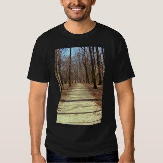 La camiseta de los hombres de la tarde del playera