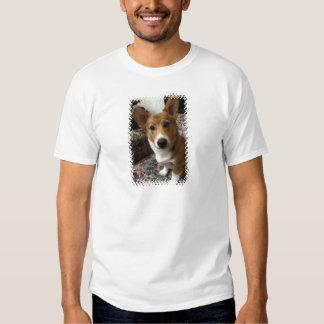 La camiseta de los hombres del Corgi del Pembroke Playeras