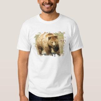 La camiseta de los hombres del oso grizzly polera