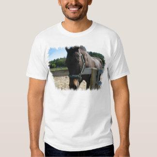 La camiseta de los hombres excelentes del caballo playeras