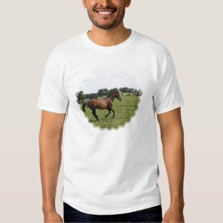 La camiseta de los hombres excelentes galopantes camisas