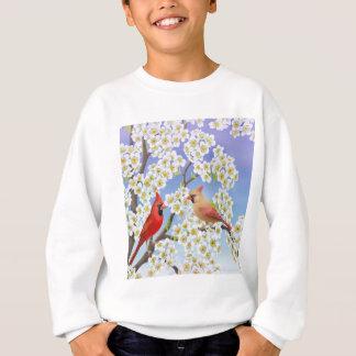 La camiseta de los niños de los cardenales camisas