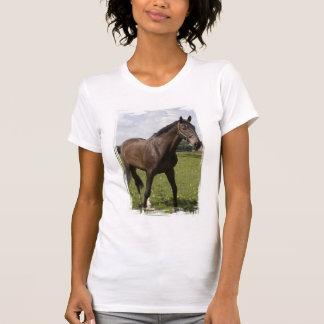 La camiseta del chica excelente del caballo camisas