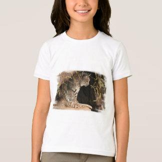 La camiseta del niño de las fotos del lince