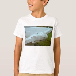 La camiseta del niño del tiempo y de la marea