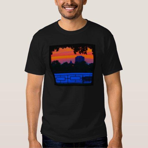La camiseta negra de los hombres de la puesta del playera