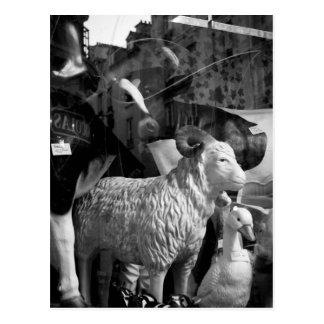 La Campagne à Paris rue Daguerre Sheep postcard