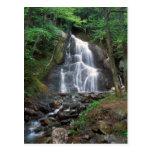 La cañada del musgo cae las montañas verdes postal