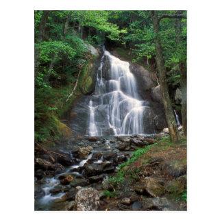 La cañada del musgo cae las montañas verdes tarjeta postal